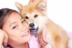 Mon chiot images stock