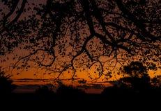 Mon coucher du soleil Image libre de droits
