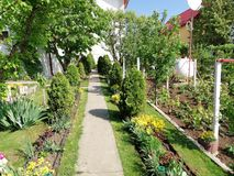 Mon jardin photographie stock libre de droits