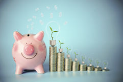 Mon pile of coins. Pile of money coins with small tree grow up with pink and piggy bank on blue sky Royalty Free Stock Images