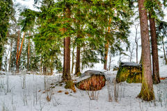 Mon repos Park Vyborg Russia Stock Photography