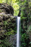 Mon Tha Than Waterfall in Doi Suthep - Pui National Park, Chiangmai Royalty Free Stock Images