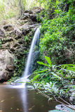 Mon Tha Than Waterfall In Doi Suthep - Pui National Park Royalty Free Stock Images