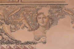 Mona Lisa του Galilee Στοκ εικόνες με δικαίωμα ελεύθερης χρήσης