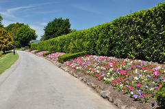 Mona Vale - Flower Beds, Christchurch, New Zealand. The beautiful Mona Vale gardens - five and a half hectares of gardens and landscaped lawns, gently rolling Stock Photo