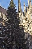 Monachium, Niemcy - choinka w Marienplatz Obraz Stock