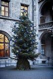 Monachium, Niemcy - choinka w urzędu miasta podwórzu Obrazy Royalty Free