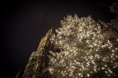 Monachium nowy urząd miasta Neues Rathaus brać podczas snown zimy nocy z choinką Monachium boże narodzenia wprowadzać na rynek w  Obraz Stock