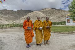 Monaci buddisti del Gelug o immagine stock libera da diritti