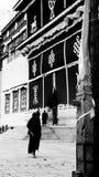 Monaci che camminano nel tempio del pino fotografia stock libera da diritti