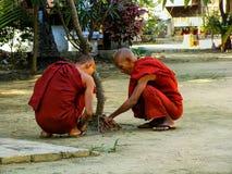 Monaci che si siedono nel cortile di Shwe nel monastero i di Kyaung del recipiente fotografia stock