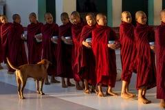 Monaci e cane Fotografia Stock