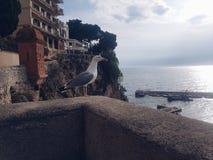 Monaco obrazy royalty free
