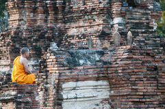 Monaco buddista nella meditazione Fotografie Stock
