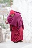 Monaco buddista tibetano anziano in Ladakh L'India Immagine Stock Libera da Diritti