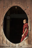 Monaco del principiante - Nyaungshwe - Myanmar (Birmania) Fotografia Stock Libera da Diritti