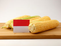 Monaco flag on a wooden panel with corn isolated on a white back Royalty Free Stock Photos