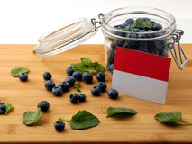 Monaco flag on a wooden plank with blueberries  on white Stock Image