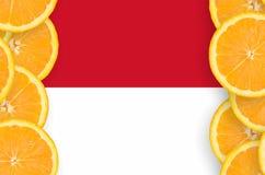 Monaco flagga i vertikal ram för citrusfruktskivor royaltyfri foto