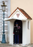 Monaco - Guardsman Royalty Free Stock Image