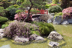 Monaco - Japanese garden Royalty Free Stock Photo