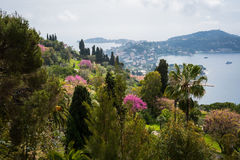 Monaco panorama Royalty Free Stock Photos