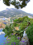 Monaco scenery Royalty Free Stock Photography