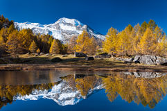 Monal lake at fall. A lake with a snowy mountain and orange trees at fall Royalty Free Stock Photo