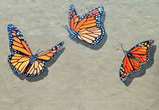 Monarch Butterflies. Are celebrated in the small oceanfront town of Pacific Grove, home of the Monarch Grove Sanctuary, in central California stock photos