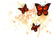 Monarch Butterfly Art Royalty Free Stock Image