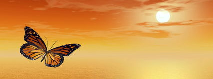 Monarch butterfly - 3D render. Beautiful monarch butterfly flying upon the ocean by orange sunset Royalty Free Stock Image