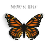Monarch butterfly isolated realistic stock illustration
