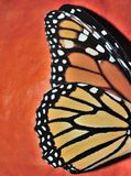 Monarch. A monarch butterfly's wing against a orange pumpkin background Stock Images