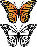 Monarch Butterfly Vector Illustration. With Silhouette stock illustration