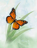Monarch Butterfly. A watercolor styled depiction of a Monarch Butterfly rising out of the grass royalty free illustration