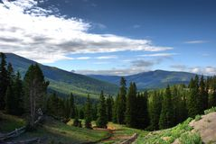 Monarch Crest trail Colorado, USA royalty free stock image