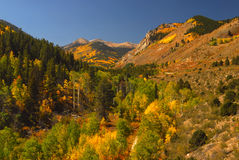 Monarch Pass. In full color in fall Colorado stock photo