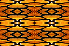 Monarch Pattern 1. A background textured pattern created from a section of Monarch butterfly wing (photographed). This pattern can be repeated seamlessly stock images