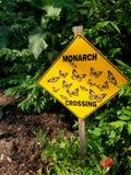 Monarchicznego motyla znaka skrzyżowanie Zdjęcie Stock