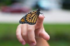 Monark på fingret royaltyfria foton