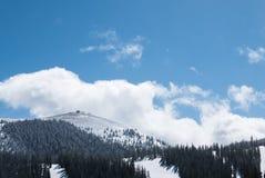 Monark Ski Area royaltyfri foto