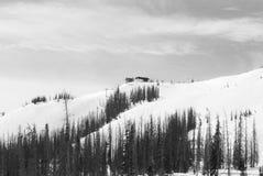 Monark Ski Area royaltyfri fotografi