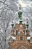 Monastère de Donskoy Image libre de droits