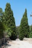Monastère de Filerimos, Rhodes Island, Grèce l'europe Arbres de cyprès abondamment prévus, menant à un calvaire de Via Crucis à p photo stock