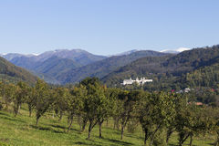 Monastère de Horezu image stock