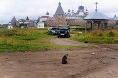 Monastère Russie de Solovki vue d'une route de campagne Images libres de droits