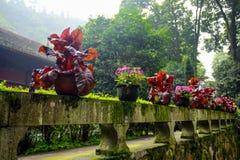 Monastério da montagem Emai Shan Foto de Stock Royalty Free