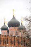 Monastério de Donskcoi Foto de Stock