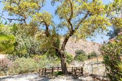 Monastério (mosteiro) no vale de Messara na ilha da Creta em Grécia Fotografia de Stock