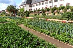 Monastério Seligenstadt - jardim vegetal em Seligenstadt, Alemanha Fotos de Stock Royalty Free